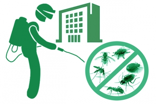 уничтожение тараканов в офисах, нежилых помещениях