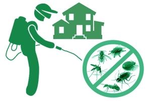 Дезинсекция дома. Уничтожение тараканов, клопов, муравьев...