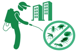 Дезинсекция квартиры. Уничтожение тараканов, клопов, муравьев...